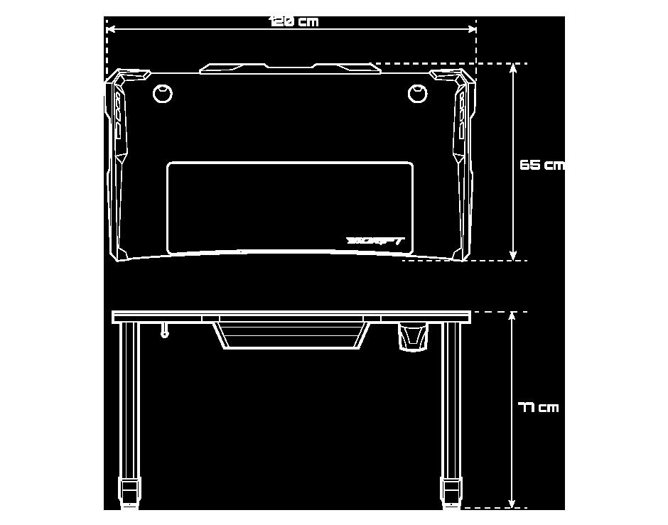 DZ300